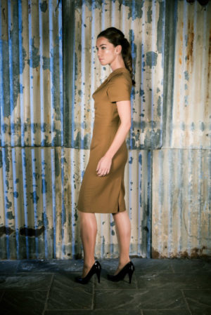 Row 22 _ Female Image No.3 _ Brown Dress